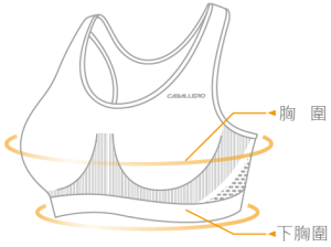 sports bra sizing info